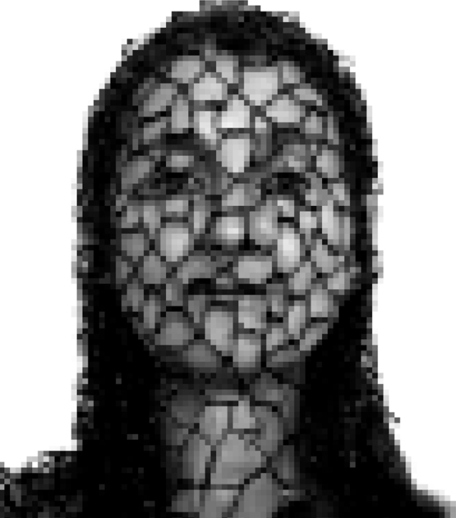 NANOME digitalt pixlat fotografi, 2007, print 100x150 cm